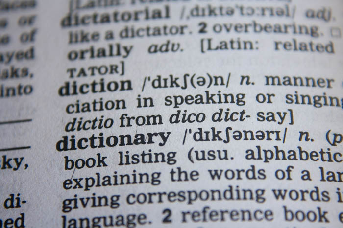 A dictionary article